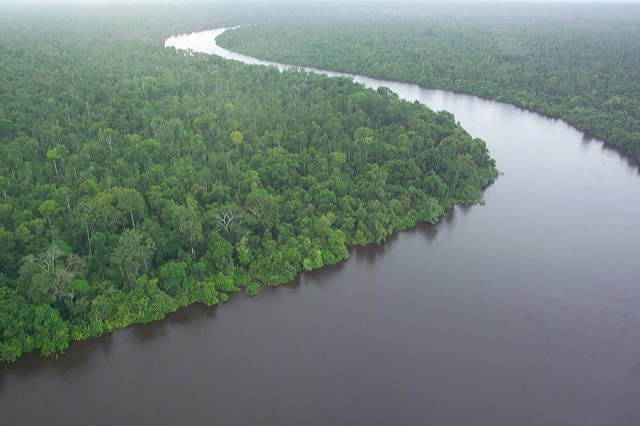 Mining ban in Indonesia can restore millions of hectares of protected and conserved forest land