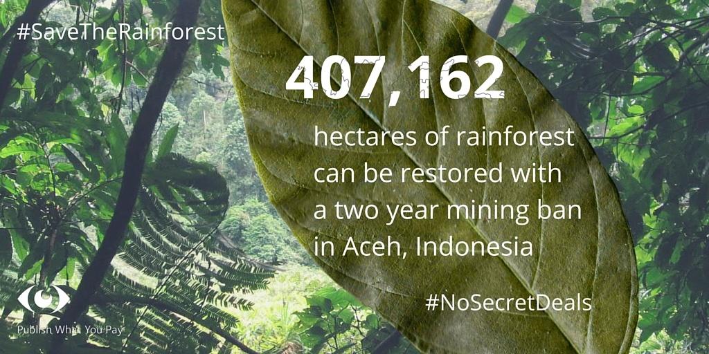 Indonesia rainforest infographic (1)